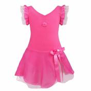 iEFiEL Girls Kids Short Sleeves Ballet Dance Leotard Dancewear Dresses Gymnastic Costumes