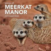 Gangs of Meerkat Manor 2017 Calendar