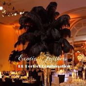 Special Sale 100 Pcs. BLACK OSTRICH Feathers Wholesale Bulk 2.1cm long DELUXE FEATHERS