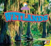 Wetlands (Exploring Ecosystems