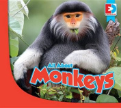 All about Monkeys