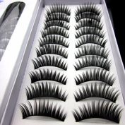 10 Pairs Natural False Eye Lashes Extension