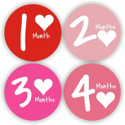 Baby Monthly Stickers - Baby Stickers - Baby Girl Month Stickers - Baby Shower Gift