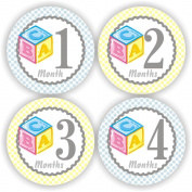 Baby Boy Monthly Stickers - Baby Stickers - Baby Shower Stickers - Baby Block Stickers