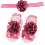 ZebraStory Baby Girl Headband + Barefoot Sandals Lace Flower Bands Elastic Foot Hair Accessories