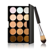 Fenical Makeup Concealer Palette - 15 Colours Contour Face Cream with Powder Brush