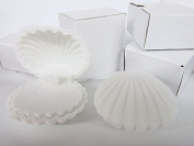 12pc White Sea Shell Design Necklace Earring Jewellery 5.1cm Gift Box JD-4 US Seller Ship Fast