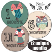 SALE! Baby Owl Monthly Stickers - Great Registry Keepsake for Babies, Baby Boy or Girl Shower Gift Idea or Milestone Photo Prop - Easy to Peel, Stick, Shoot and Remove from Clothing and Onesies