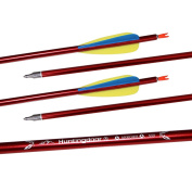 Huntingdoor 80cm Arrows for Archery Aluminium Arrows for Recurve and Compound Bow 12pcs