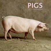 2017 Calendar: Pigs