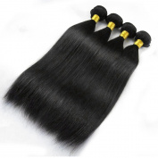"Miss Wang Peruvian Virgin Human Hair Extension Weave 4 Bundles 400g - Natural Black, 8""8""8""8"", Straight"