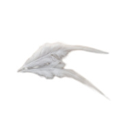 Everyshine Wholesale 600pcs Rooster Feather 10cm - 15cm