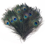 Trimming Shop 50 X 25cm - 30cm Peacock Eye Tail Feathers - Natural Decoration For Arts And Crafts, Home Decoration, Costumes, And Wedding Centrepieces Set Of 50 Blue