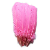 Everyshine 120 Pcs Turkey Quill Feathers 25cm - 30cm Pink