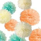 Sorive® Pack of 12pcs 4 different Sizes 20cm 25cm 30cm 36cm Ivory Peach Mint Party Tissue Pom Poms Flower Party Decorations for Weddings, Birthday, Bridal, Baby Showers Nursery Décor SRI1900