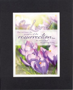 GoodOldSaying - Poem for Inspirations - Our Lord has written the promise of the resurrection . . . on 8x10 Biblical Verse set in Double Mat (Black On White) - A Priceless Poetry Keepsake Collection