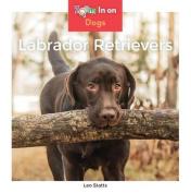 Labrador Retrievers (Dogs
