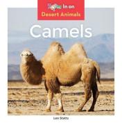 Camels (Desert Animals)