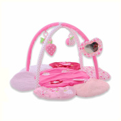 MLSH Charming 3-in-1 Musical Activity Kick and Play Piano Gym , pink