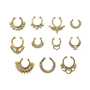 SNNplapla 1 Set/11 Pieces Fake Septum Clicker Nose Ring Non Piercing Hanger Clip