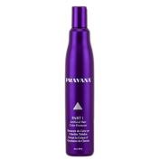 Pravana Part 1 - Artificial Hair Colour Extractor - 300ml