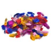 100 Pcs/Set Guinea Fowl Feather Multi-Coloured Nature Feather 4.5-10cm