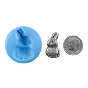 Cool Tools - Antique Mould - Chocolate Bunny