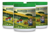 Natural green energy - GREEN SUPERFOOD BLEND 300G WITH NATURAL BERRY flavour - regulate digestive system