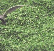 Green (Forest) Terra Texture Garden Flakes - 106-0741