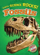 Fossils (Earth Science Rocks!)