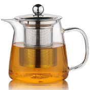 Moyishi Perfect Clear Glass Teapot with Stainless Steel Infuser & Lid, Pyrex Glass Teapots Stovetop Safe 600ml