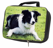 Border Collie Dog Black Insulated Lunch Box