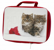 Kittens in Christmas Hat Insulated Red Lunch Box