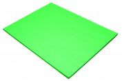 Riverside Paper Tru-Ray(R) Construction Paper, 46cm . x 60cm ., Festive Green