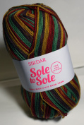 Sirdar Sole to Sole Sock Yarn- Clever Clogs
