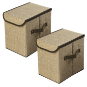 LightBiz Storage Box with Lid, Foldable Linen Closet Organisers Cubes Bins Containers 25L for Toys, Arts, Books, Clothing, Dresses and more - 2 Pack