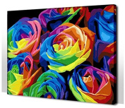 Diy oil painting, paint by number kit- Colourful 16*50cm .