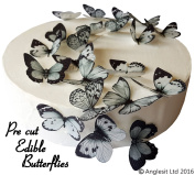 24 X PRE-CUT BEAUTIFUL MEDIUM BLACK & GREY BUTTERFLIES EDIBLE RICE / WAFER PAPER PRE CUT CUPCAKE CAKE DESSERT TOPPERS BIRTHDAY PARTY WEDDING BABY SHOWER DECORATIONS