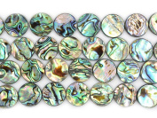 """18mm Natural Abalone Shell Flat Coin Beads Strand 16"""" Jewellery Making Beads"""