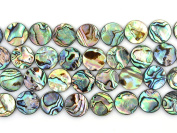 "16mm Natural Abalone Shell Flat Coin Beads Strand 16"" Jewellery Making Beads"