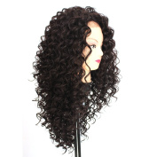 V'Nice® Synthetic Kinky Curly Lace Front Wig for Black Women Heat Resistant Synthetic African American Wigs Natural Black Colour