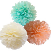 Somnr®12pcs Mixed Peach Ivory Mint Tissue Paper Pom Poms Flowers Wedding Centrepieces Birthday Party Bridal Shower Party Hanging Decoration by Somnr