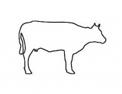 Cow Stencil Made From 4 Ply Matboard
