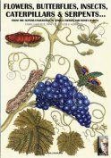 Flowers, Butterflies, Insects, Caterpillars & Serpents...  : From Sybilla Merian & Moses Hariss XVII-XVIII Centuries Engravings