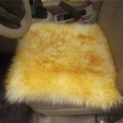 Modern Australia Sheepskin Wool Carpet Chair Cover Mats Living Room Bedroom The Whole European Wool Cushion Sofa Cushion Vehicle