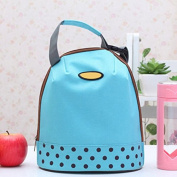 Hrph Portable Cooler Tote Insulated Canvas Lunch Bag Thermal Food Picnic Bento Lunch Bags