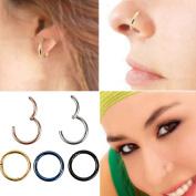 Chnli 8mm Titanium Hinged Seamless Segment Clicker Septum Lip Ear Nose Ring Piercing Hoop Lip Ear Nose Eyebrow Universal