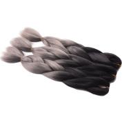 60cm Silver Ombre Braiding Hair Kinky Twist Hair Two Tone Jumbo Braid Synthetic Braiding Hair