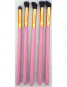 Five brushes pink Powder paint highlights brush brush painting beauty makeup kit