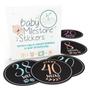 Weekly Pregnancy Stickers for Baby Belly Bump - Week Milestone Sticker for Mom